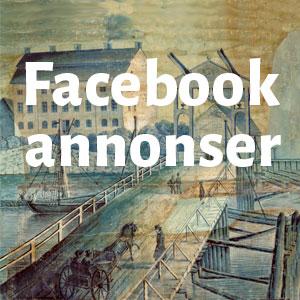 Facebookannons för bok – 3. Kampanjresultat